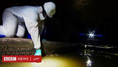 Photo of فيروس كورونا: فحص مياة الصرف وسيلة جديدة لتحديد أماكن تفشي الوباء