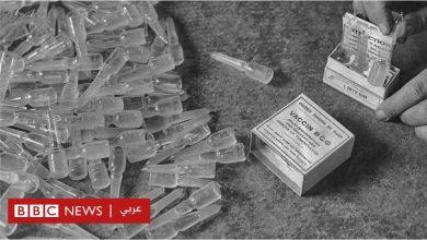 Photo of فيروس كورونا: هل ينقذ لقاح طُّور منذ 100 عام البشرية؟