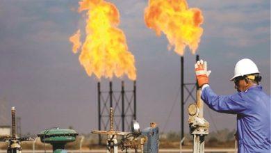 Photo of كامكو إنفست النفط يرتفع لأعلى مستوى | جريدة الأنباء