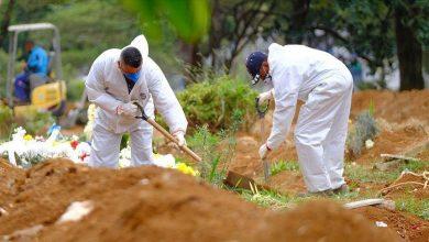 Photo of البرازيل تسجل 29 ألف إصابة جديدة بفيروس كورونا و456 وفاة