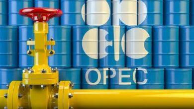 Photo of تحالف «أوبك+» يؤكد مواصلة التزام المنتجين بتحقيق استقرار سوق النفط