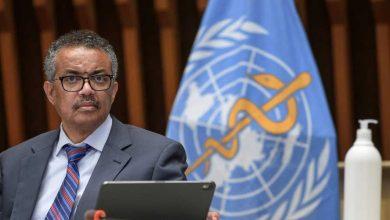 Photo of الصحة العالمية مناعة القطيع لن تتحقق في رغم توافر اللقاحات