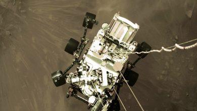 Photo of صور مذهلة لهبوط بيرسفيرنس على سطح المريخ
