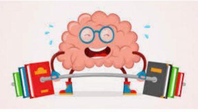 Photo of تنمية عادات العقل … مقال بقلم الدكتورة سارة المطيري