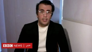 Photo of شقيق لجين الهذلول: لا نتوقع من القضاء السعودي تحقيق العدالة