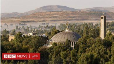 Photo of الصراع في تيغراي: الضباع نهشت جثث الضحايا في مدينة أكسوم المقدسة؟