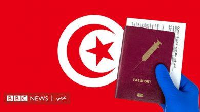 Photo of لقاح كورونا: أين ذهبت جرعات اللقاح التي قدمتها الإمارات للرئاسة التونسية؟