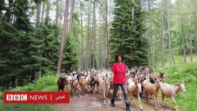 Photo of قصة لاجئة إثيوبية قتلت بعد أن أعادت الحياة إلى بلدة إيطالية