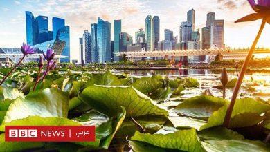 Photo of سنغافورة: ماذا نتعلم من هذا البلد الآسيوي المولع بالنظافة لدرجة جعلته يحظر العلكة؟