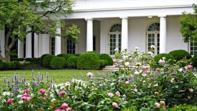 Photo of صراع سياسي حول حديقة الزهور في | جريدة الأنباء