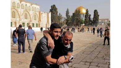 Photo of بالفيديو الاحتلال يرتكب مجزرة في   جريدة الأنباء