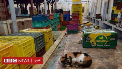 """Photo of فيروس كورونا: غضب و""""عصيان"""" في تونس لفرض الحكومة إغلاقا تاما لمدة أسبوع"""