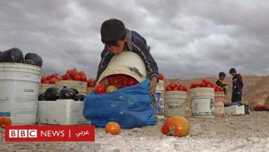 """Photo of فيروس كورونا وعمالة الأطفال: """"أريد أن يكون لدي وقت للعب"""""""