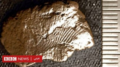 Photo of فخارة في اسكتلندا حفظت بصمات بشرية من العصر الحجري