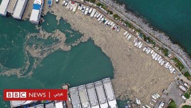 "Photo of ""مخاط البحر"" ينتشر في بحر مرمرة بتركيا"