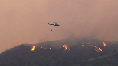 Photo of إدارة الغابات القبرصية: الحريق الذي اندلع السبت.. بات تحت السيطرة بشكل تام