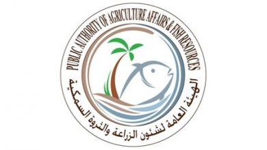 Photo of الزراعة لا مانع من فتح مباني الهيئة   جريدة الأنباء