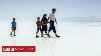 Photo of كيف أعادت إيران الحياة إلى ثاني أكبر بحيرة في العالم كانت على وشك الاختفاء؟