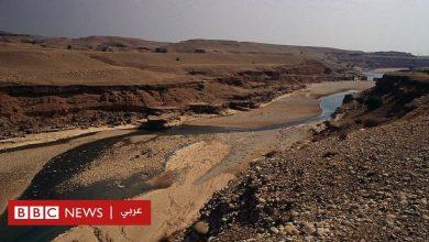 Photo of مقتل شرطي في خوزستان (إيران) خلال احتجاجات على شحّ المياه