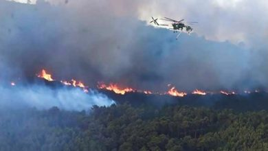 Photo of اندلاع 800 حريق في إيطاليا خلال 24   جريدة الأنباء