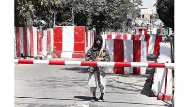 Photo of كابول تغازل طالبان وتعرض عليها | جريدة الأنباء
