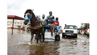 Photo of داكار غارقة في الفيضانات