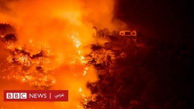 Photo of العالم في أسبوع بالصور: الحرائق تلتهم الغابات والمنتجعات السياحية حول المتوسط