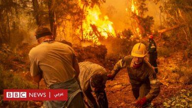 "Photo of حرائق اليونان: رئيس الوزراء يعتذر عن حدوث ""إخفاقات"" مع استمرار حرائق هائلة في جزيرة إيفيا"