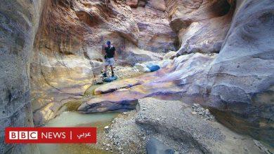 Photo of محمية ضانا: لماذا أغضب قرار تعديل حدود المحمية أردنيين؟