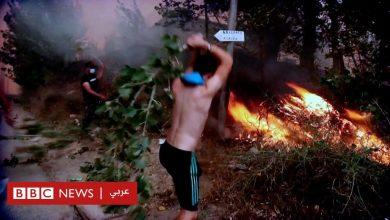 Photo of الحرائق في الجزائر والمغرب وتونس: هل هي الواقع الجديد في شمال أفريقيا؟