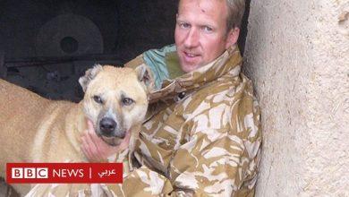 Photo of أفغانستان: صاحب مأوى للحيوانات آسف على كلماته النابية لمسؤول في وزارة الدفاع البريطانية